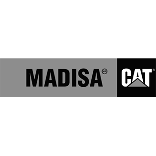 Madisa, CAT logo